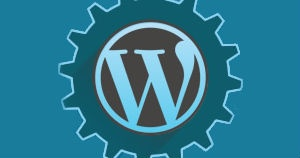 SEO Audit for Wordpress Blogs